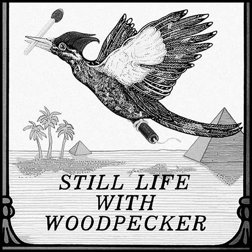 Still Life with Woodpecker by Tom Robbins [As read by Danielle in Session 03]