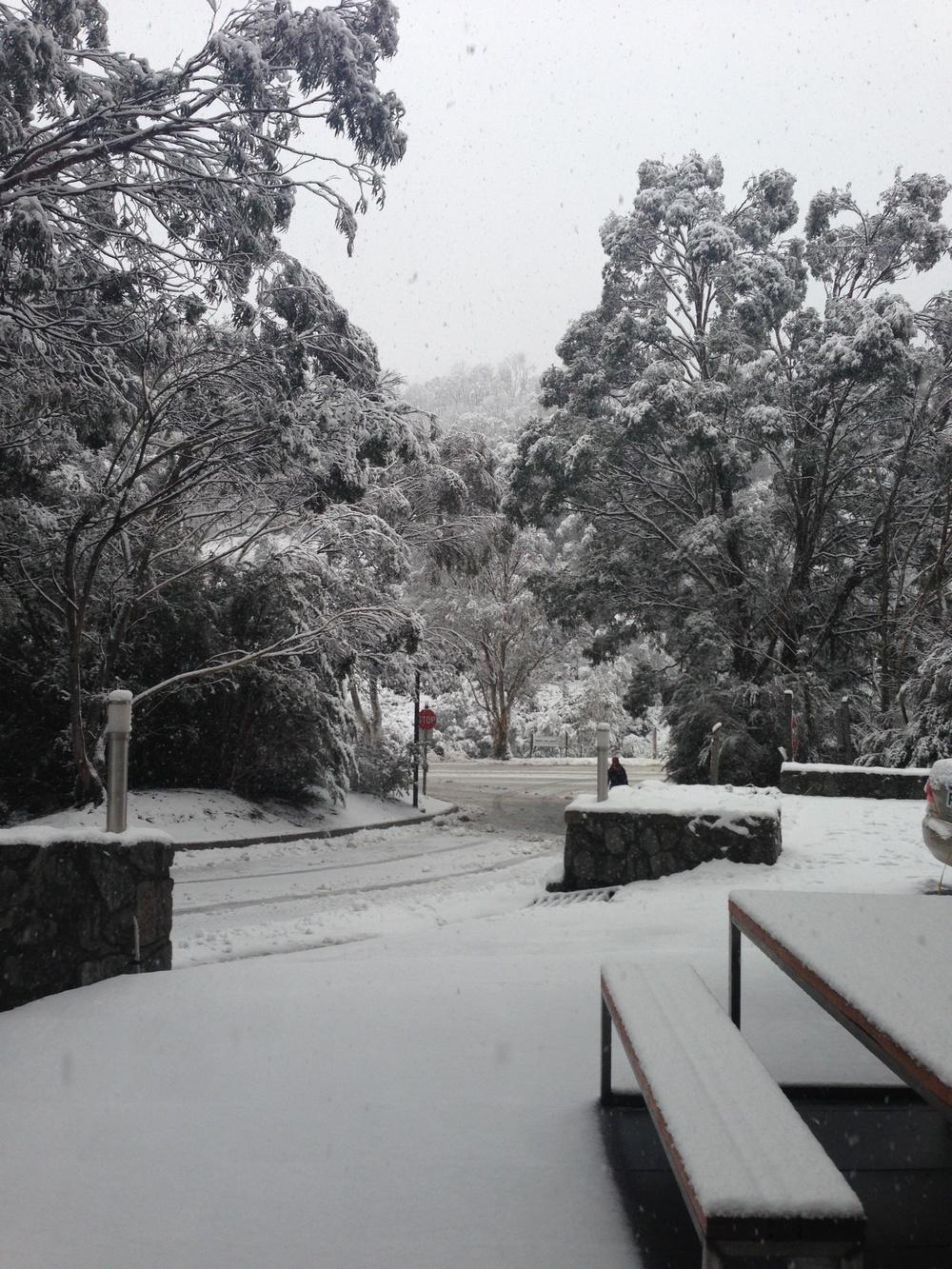 ullr snow 10.JPG