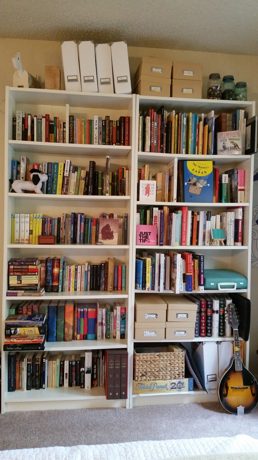 Allison's #TWILshelfie