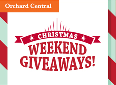 Christmas Weekend Giveaways
