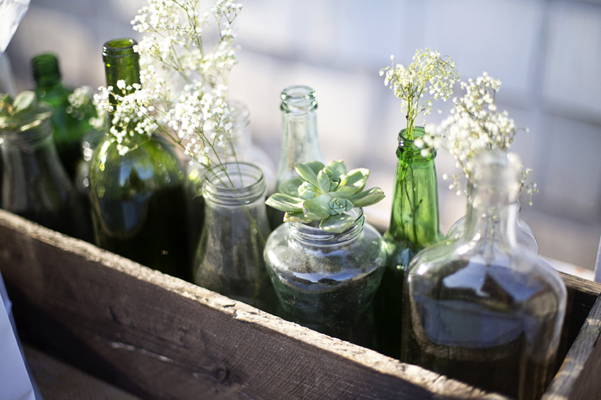 succulents and baby's breath in jars and bottles