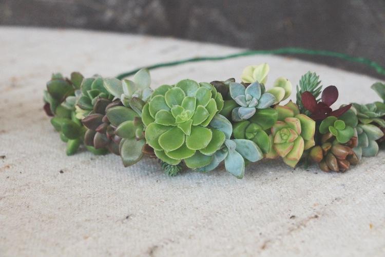 diy succulent crown via needles + leaves