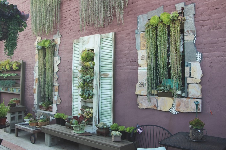 Vertical Succulent Wall Art At Cafe Oceanside Via Needles Leaves