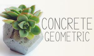 Concrete Geometric via Needles + Leaves. Geometric shaped concrete succulent planters.