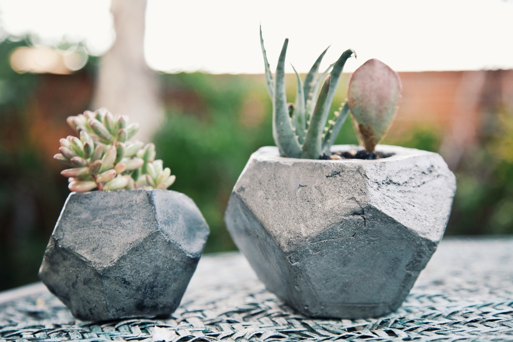 Concrete Geometric Succulent Planters via Needles + Leaves :: Giveaway