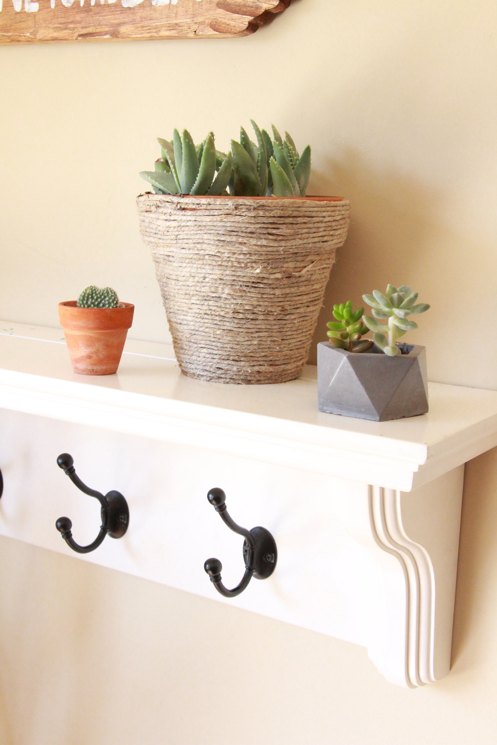 concrete-geometric-succulent-pot-seaside-succulents-a-garden-tour-needlesandleaves_net.jpg