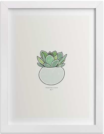 Succulent figure 1  by  Stacey Meacham