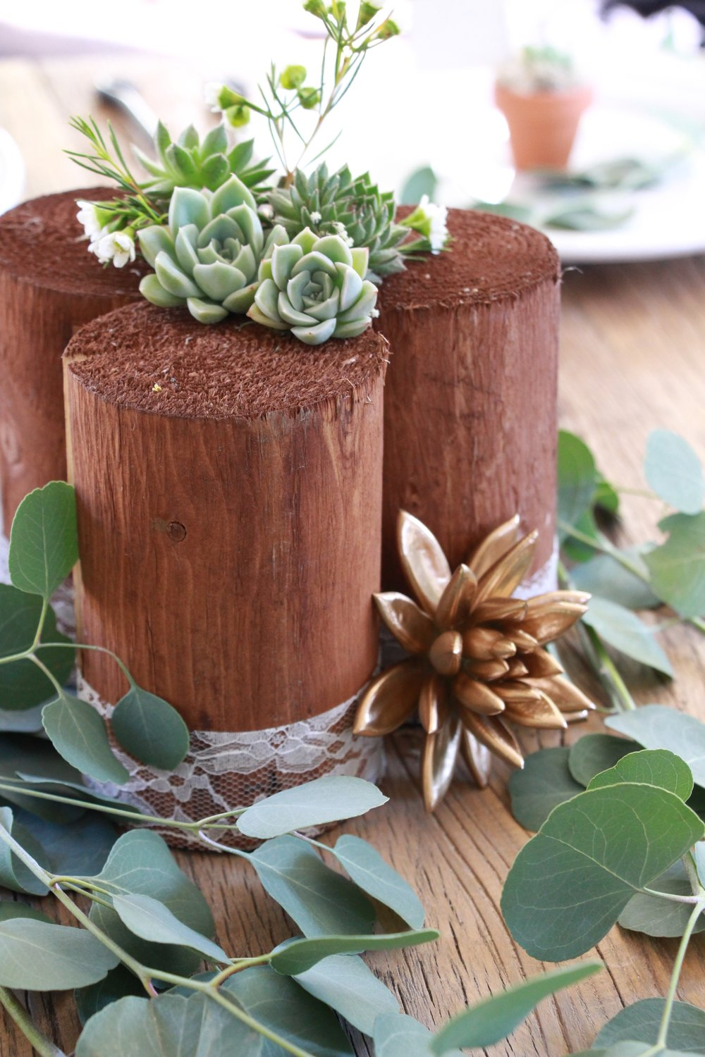 succulent-centerpiece-wedding-decor.jpg