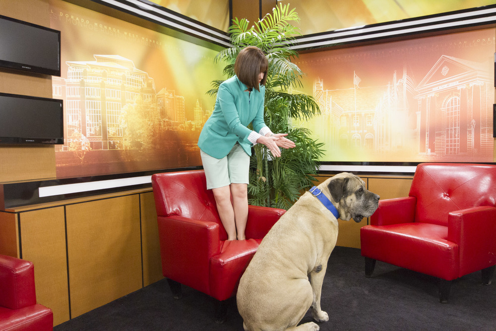Heather & Buster at the KTVE studio