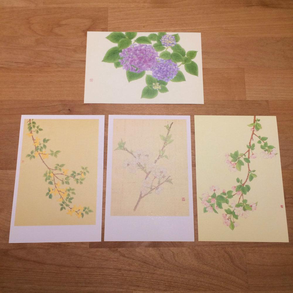 꽃 엽서세트