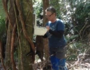 Trust member Mathea Roorda setting a Trapinator possum trap