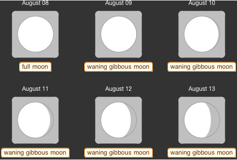 Figure 8.  Phases of the moon from August 8 to August 14. The light of a bright waning gibbous moon on 11 and 12th August may hinder the shower view.
