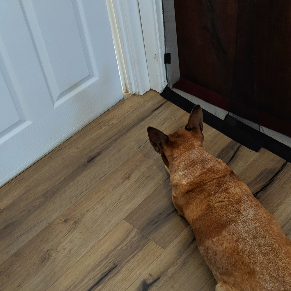 Maggie waits patiently for Nadia to come out of the bathroom.