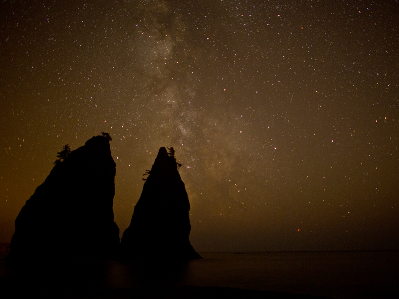 Sea stacks on the Olympic Coast