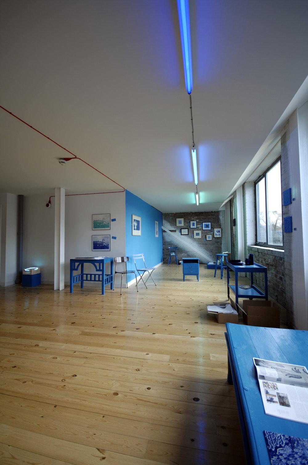 wholeroom.jpg