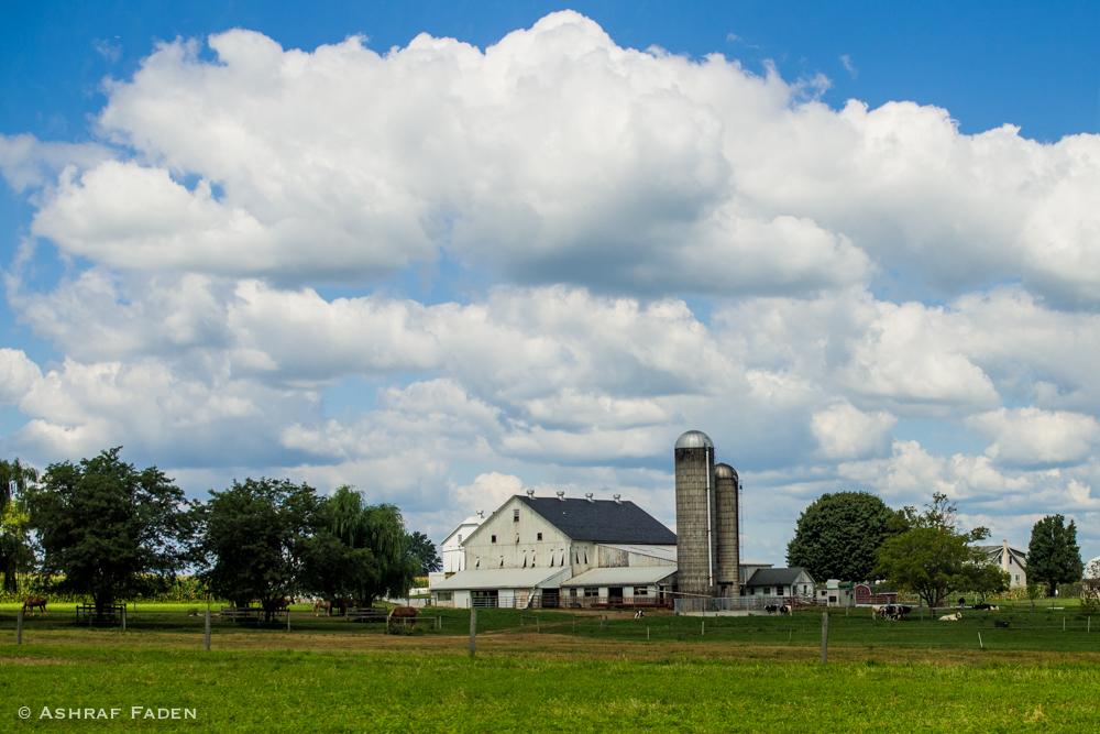 An Amish Farm