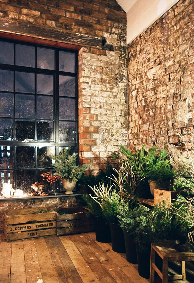 Lots and lots of foliage  |  Photo by Abi Dare of These Four Walls