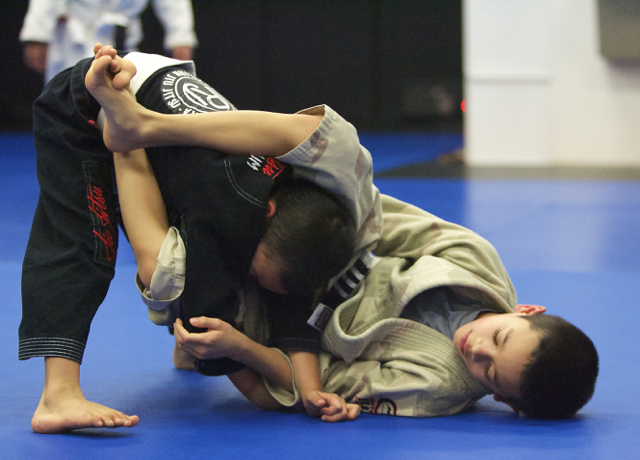 WHAT IS BRAZILIAN JIU JITSU ?