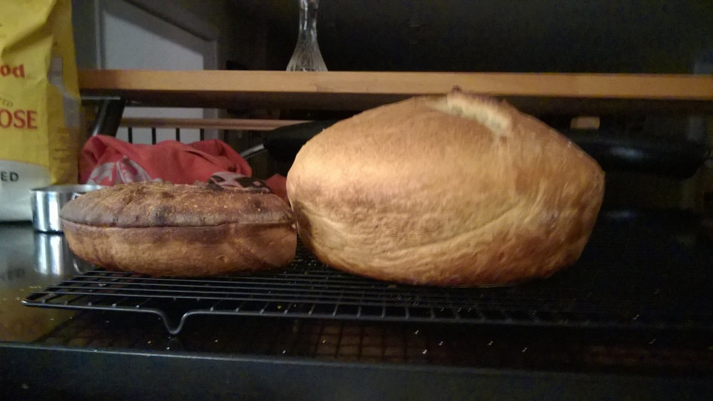 The loaf on the left was made before my starter was really ready. The one on the right, only a day and a half later. The ONLY differences were giving the starter more time to develop, and using some fresh flour to feed it. What a difference!  While it tasted quite good, the loaf on the left could have been used as a weight plate in the gym, it was so dense...