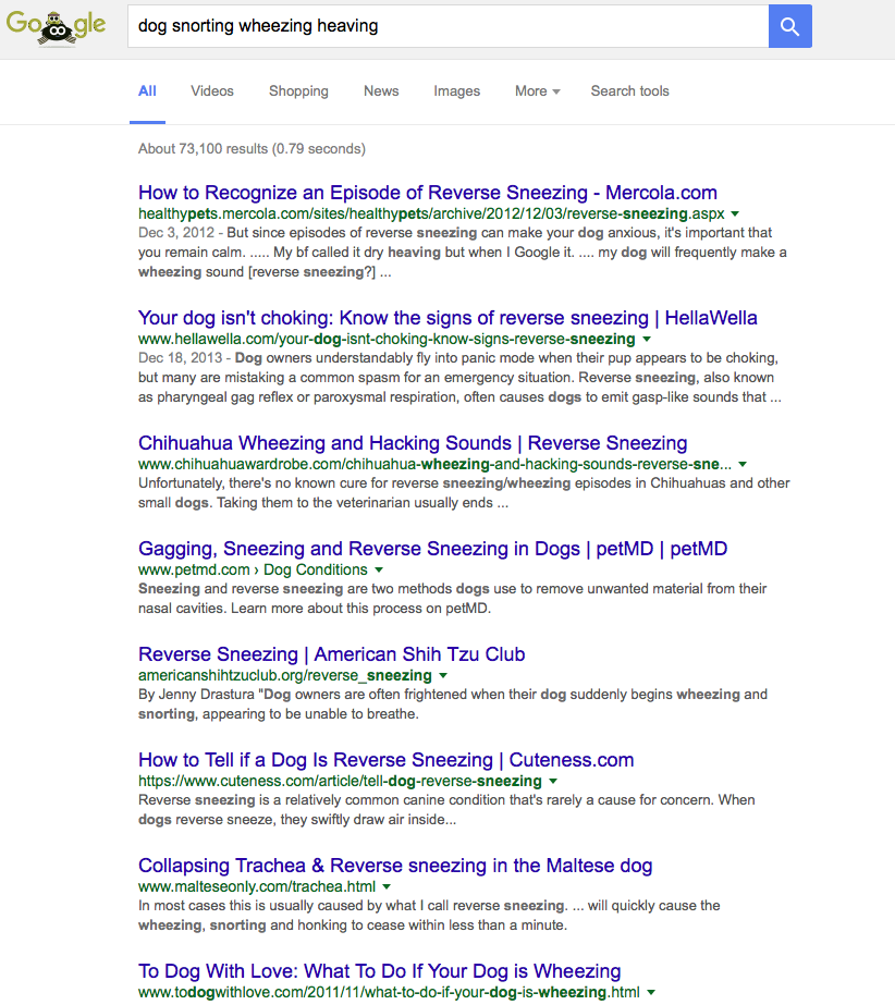 "Google results for ""dog snorting wheezing heaving"""