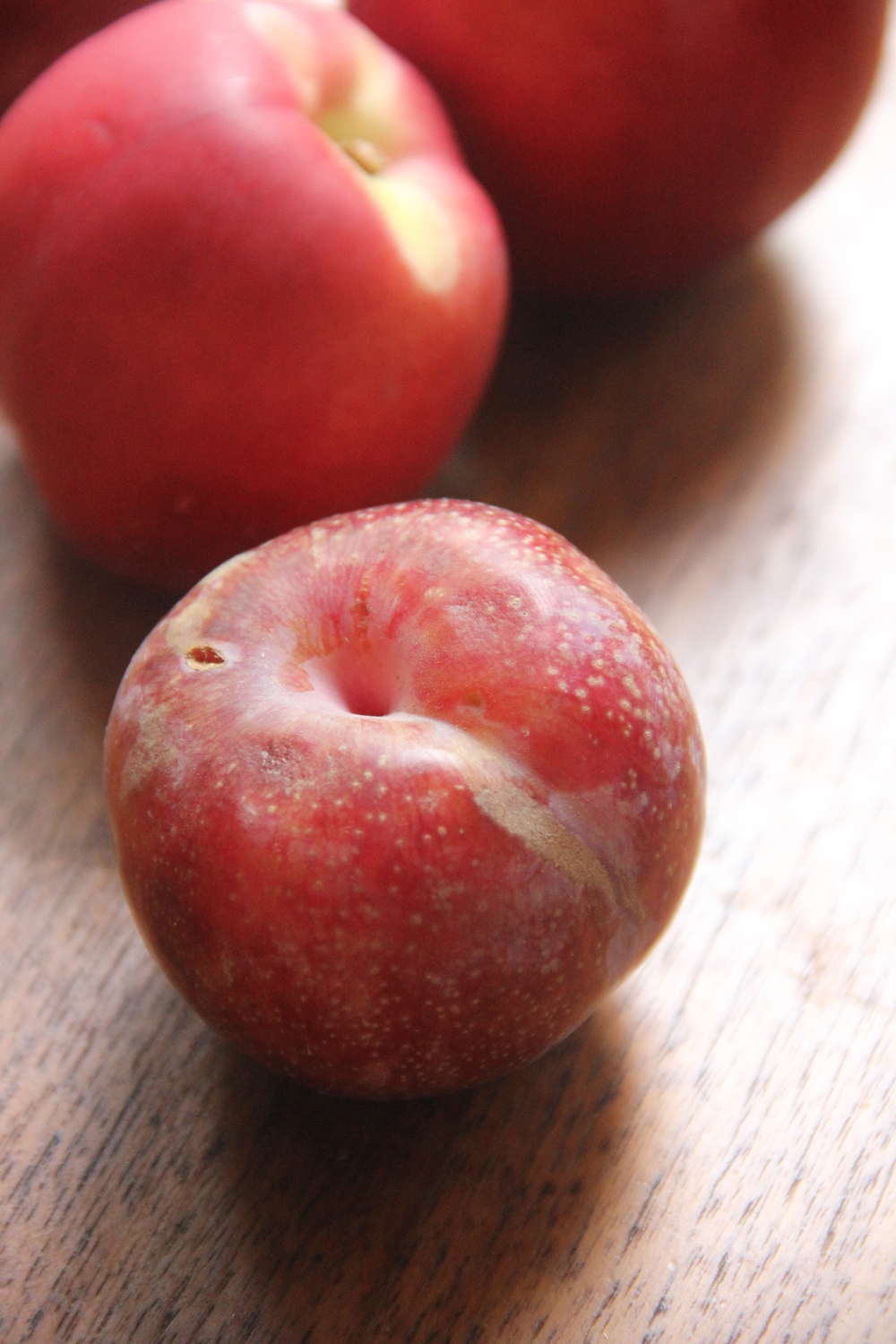 Pluot Plums and White Nectarines