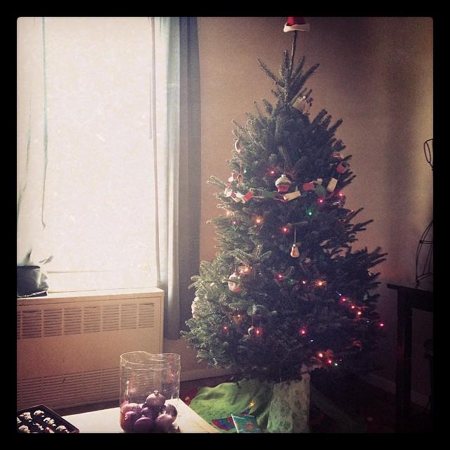 Brooklyn Christmas Tree
