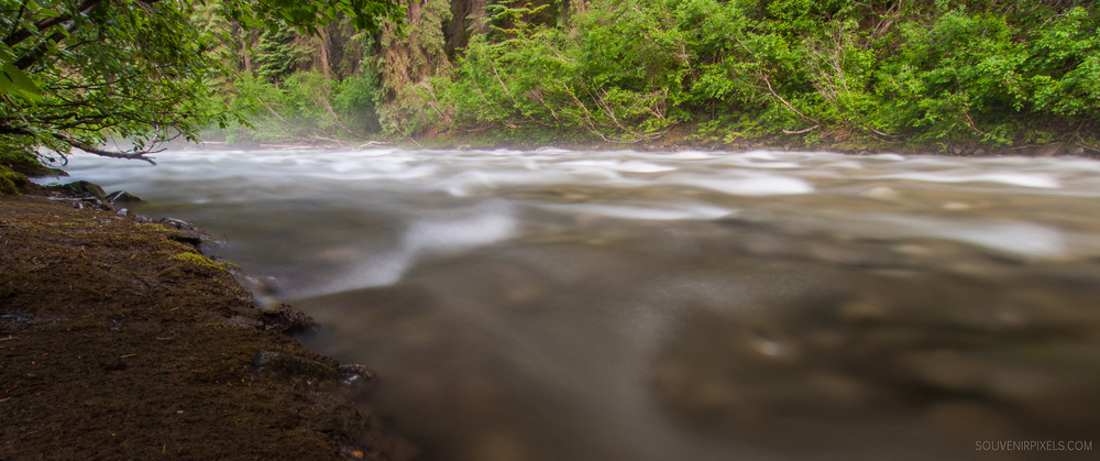 P0332-Misty Flowing Creek-XLarge.jpg