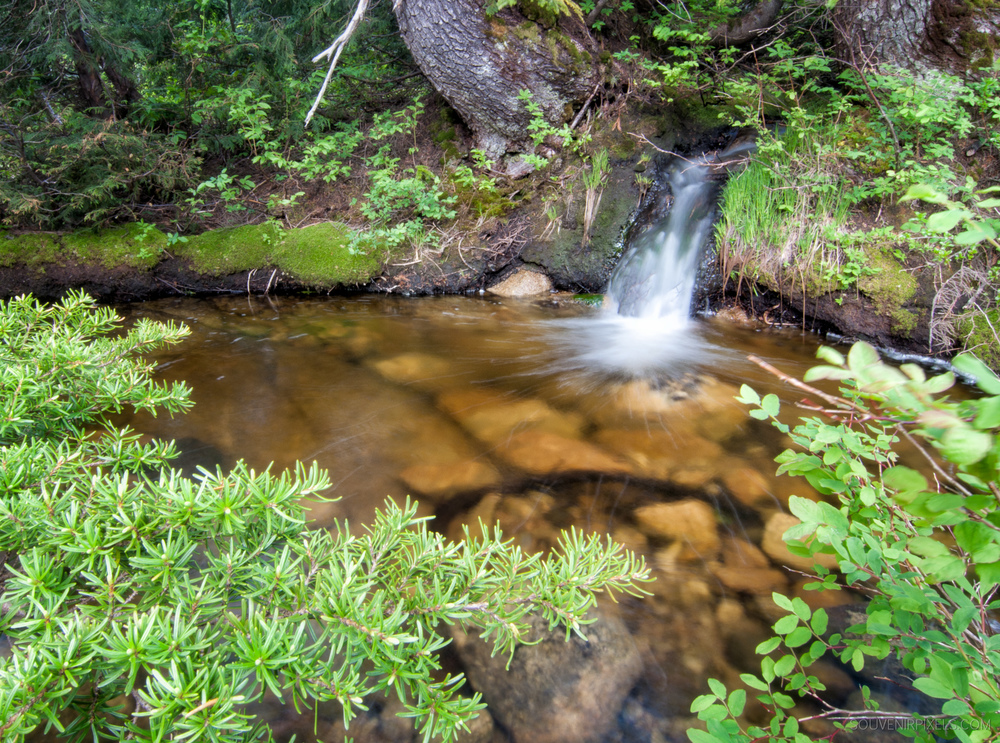P0168-Mini Waterfall-XLarge.jpg