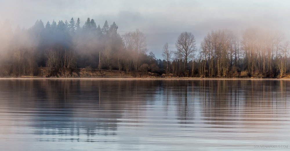 P0414-Fraser River Misty Morning-XLarge.jpg