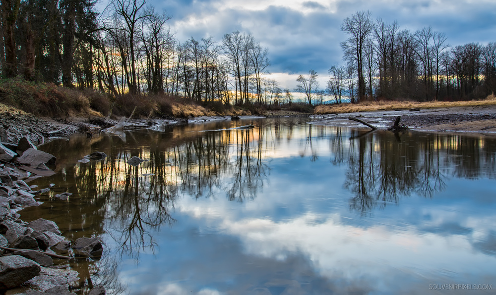 P0442-Kanata creek Reflection-XLarge.jpg
