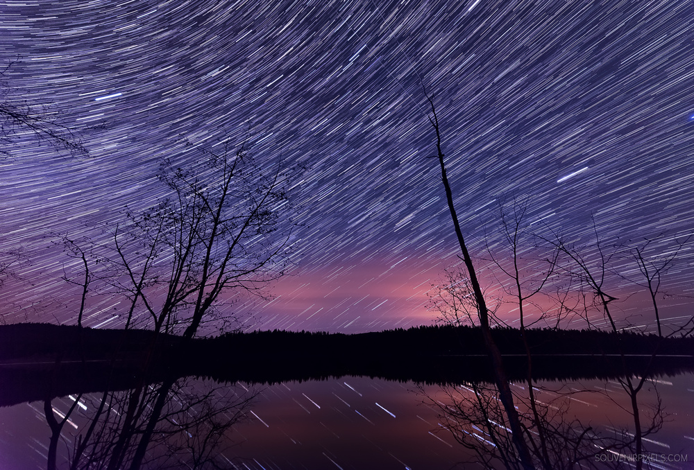 P0454-Many Star Trails-XLarge.jpg