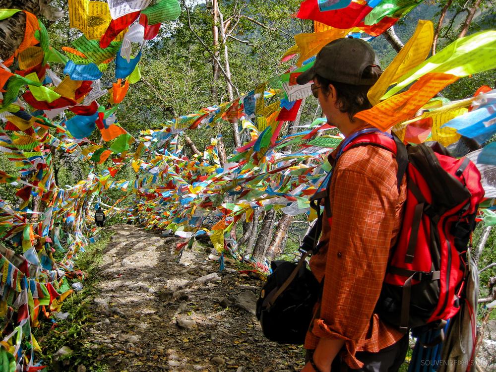 P0062-Colorful Trail-XLarge.jpg