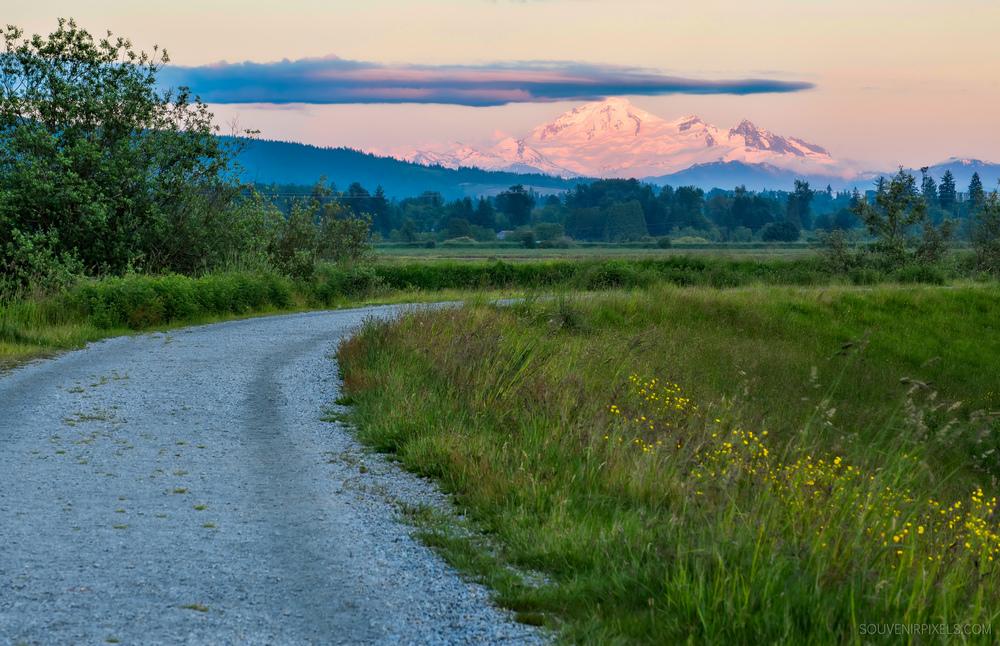 P0503-Mount Baker-XLarge.jpg
