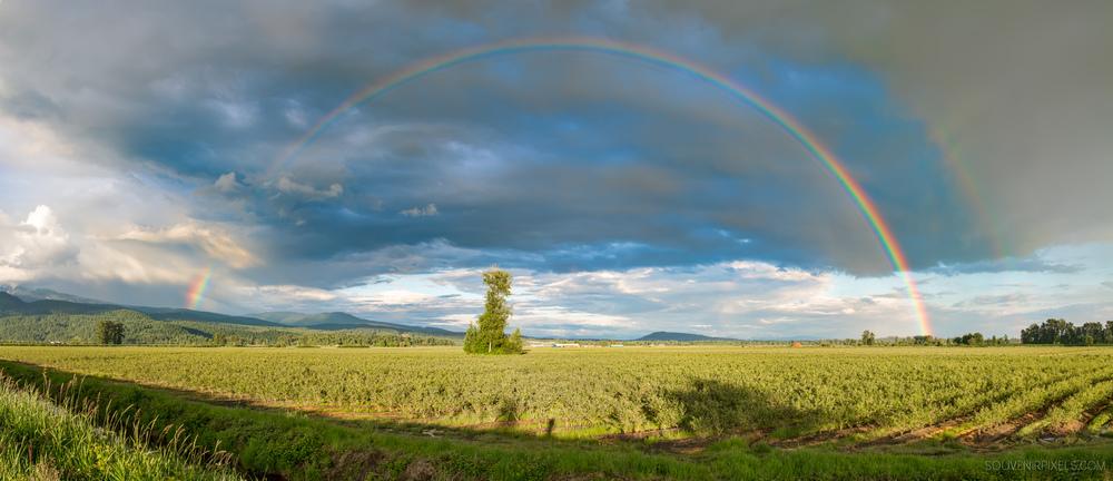 P0498-Panorama Rainbow-XLarge.jpg