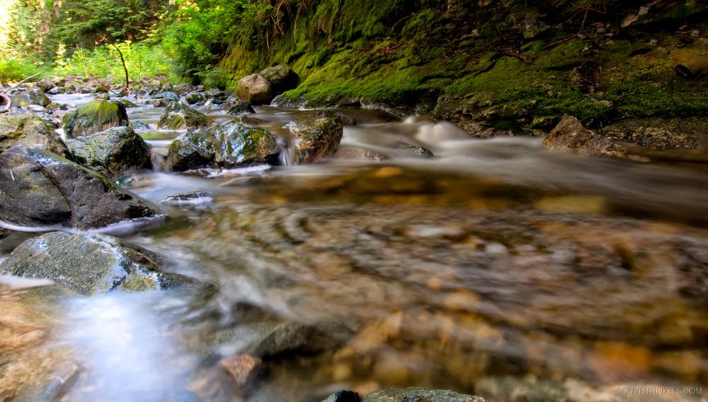 P0224-Circular Creek-XLarge.jpg