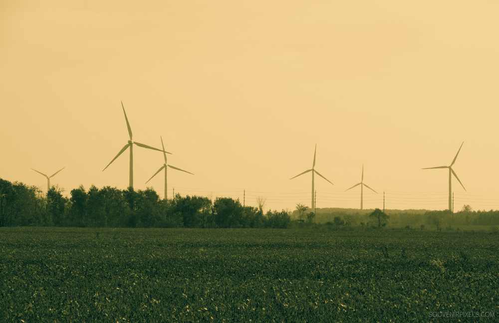 P0235-Wind Farm-XLarge.jpg