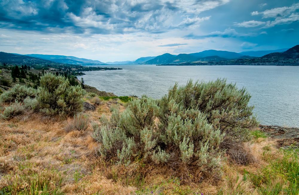 P0318-Naramatas Okanagan Lake-XLarge.jpg