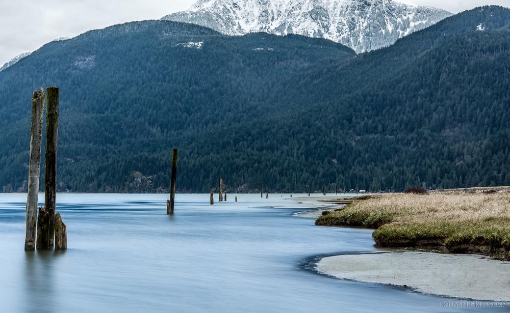 P0425-Pitt Lake-XLarge.jpg