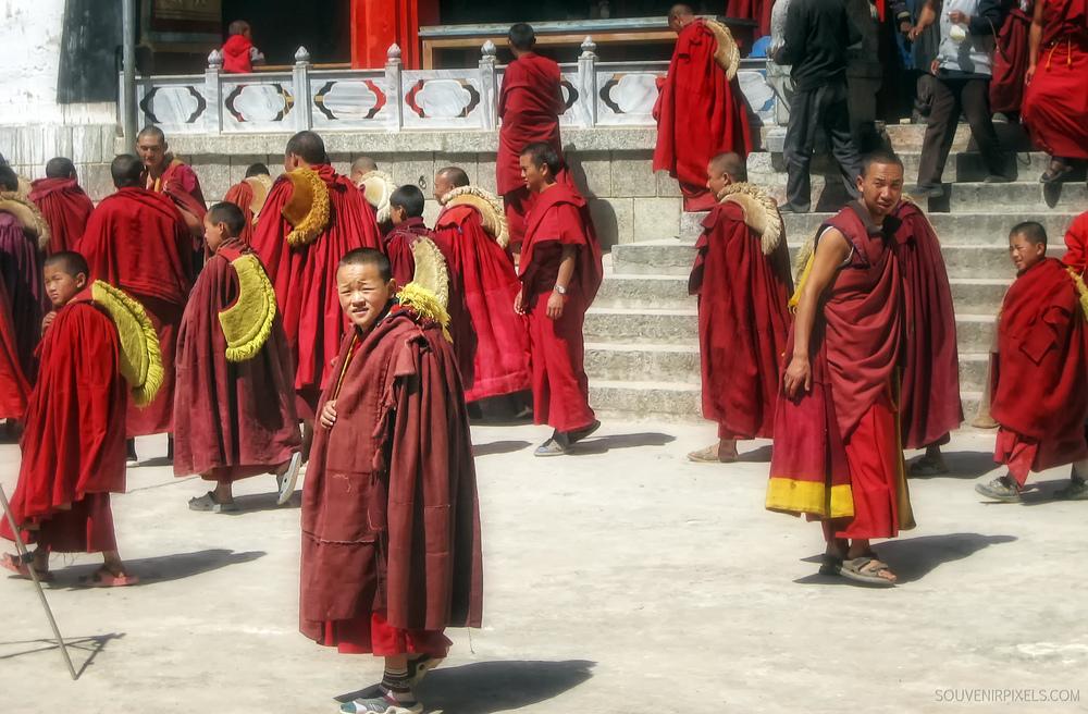 P0115-Boy monk-XLarge.jpg