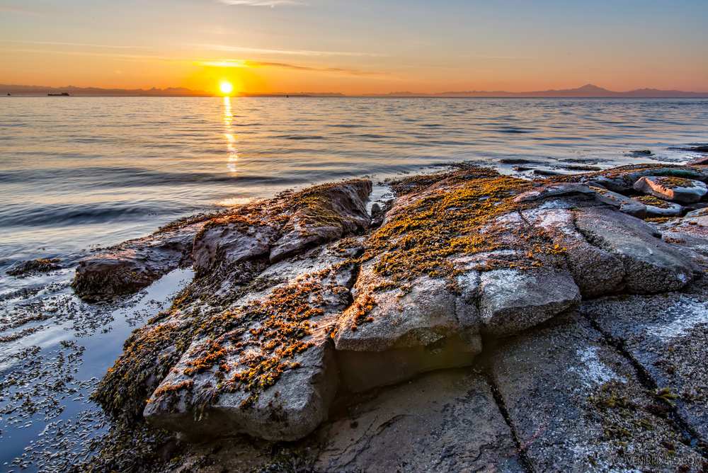 P0515-Morning Rocky Shore-XLarge.jpg