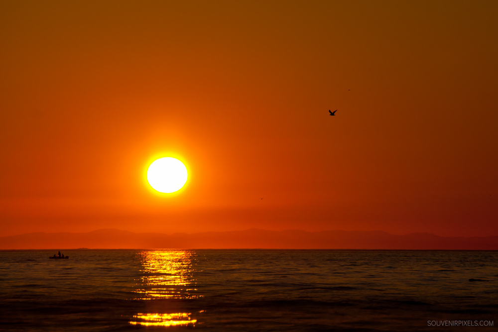 P0027-Sun Ball-XLarge.jpg
