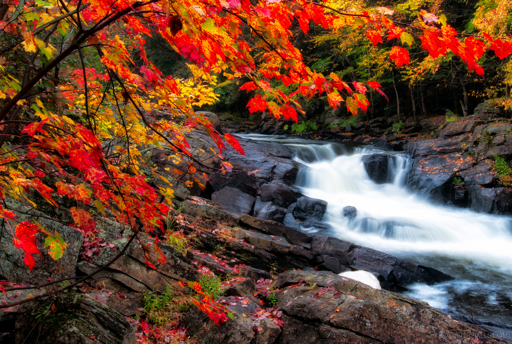 P0139-Fall Waterfall-XLarge.jpg