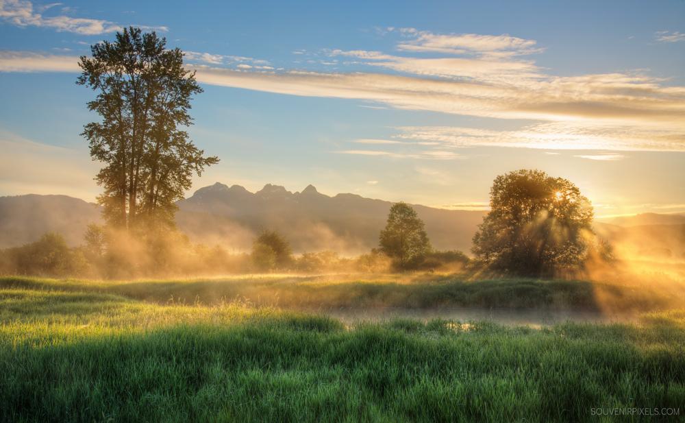 P0497-MIsty Morning Sunrise-XLarge.jpg