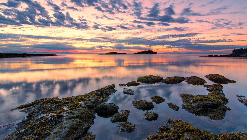 P0517-Galiano Island Pink Sunrise-XLarge.jpg