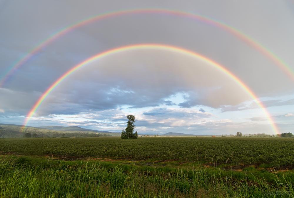 Maple Ridge Rainbow