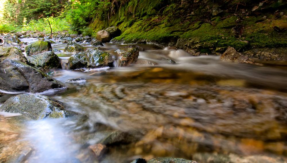 Circular Creek