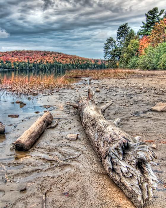 Lakeside Log