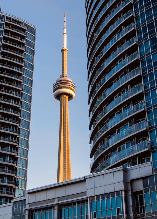 Framed CN Tower