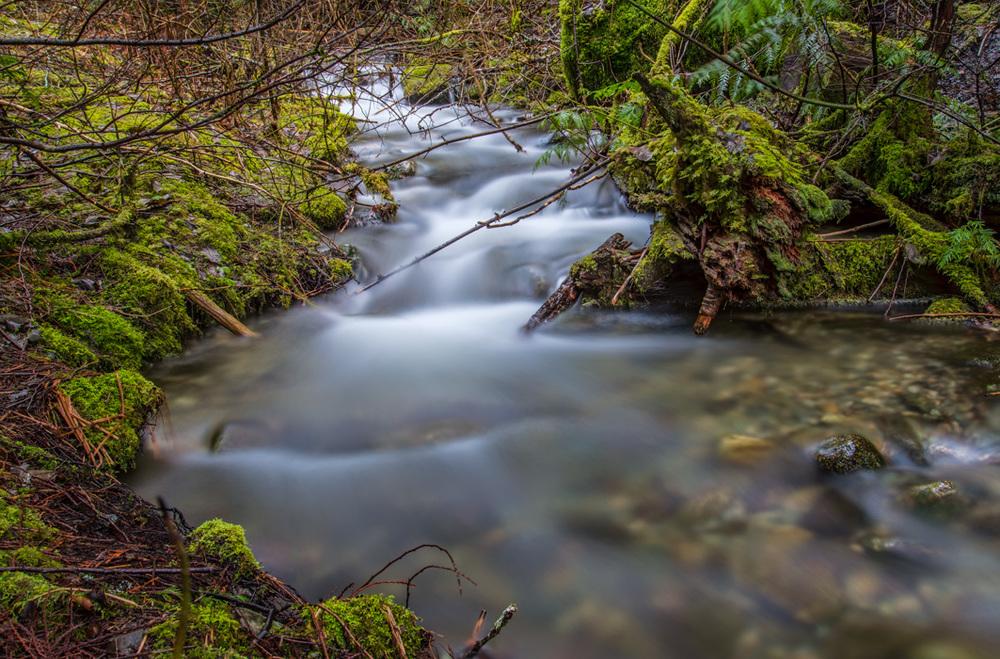 Pemberton Stream