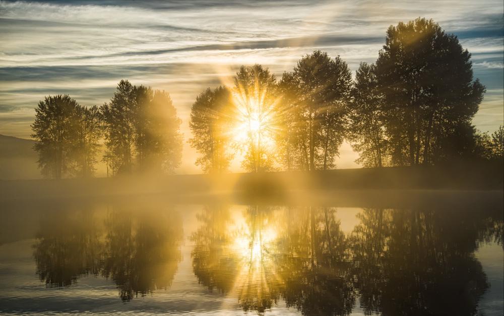 Riverside Morning Walks